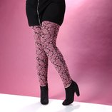 Finish the Outfit: Plus-Size Legwear