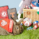 NCAA for Easter: Fun Presents
