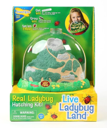 Ladybug Land & Life Cycle Stage Figurine Set