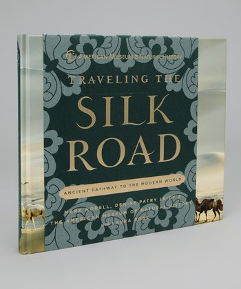 Traveling the Silk Road Hardcover
