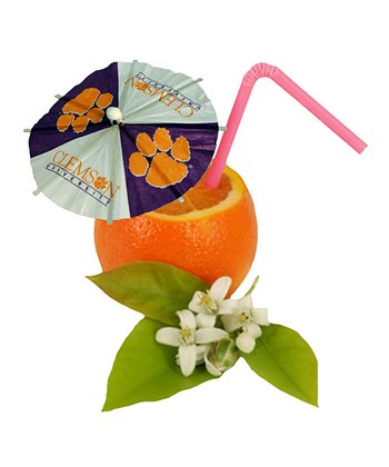 Clemson Paper Drink Umbrella Set