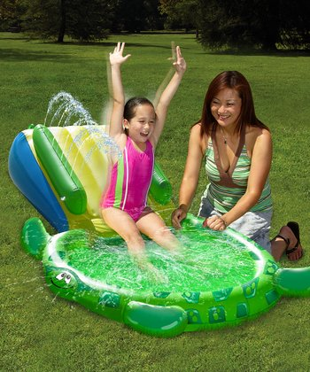 Turtle Slide Pool