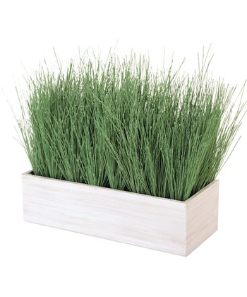 Needle Grass Box