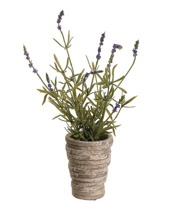 18'' French Lavender & Pot Arrangement