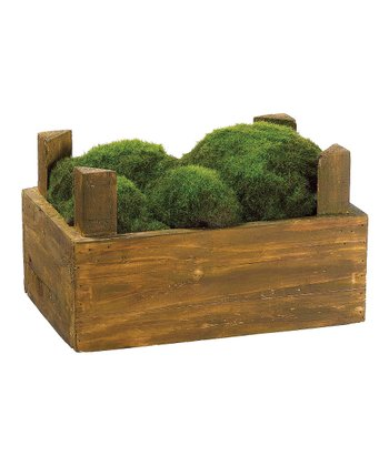 Moss Crate Arrangement