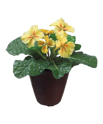 Yellow Primrose Potted Arrangement