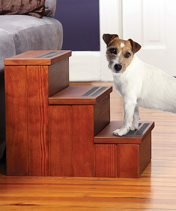 Pet Storage Steps