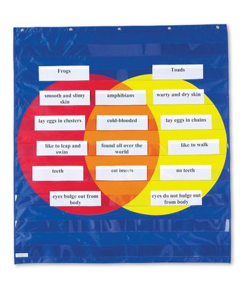 Graphic Organizer Pocket Chart Set