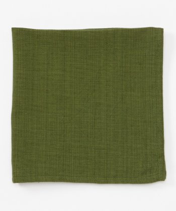Park Designs Green Casual Classics Napkin - Set of Four