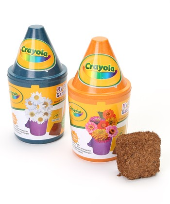 Daisy & Zinnia Crayon Pot Set
