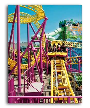 Roller Coaster Ride Colorluxe Puzzle