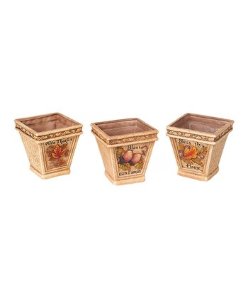 Harvest Container Set