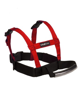 Grip 'n' Guide Kid's Ski Training Harness