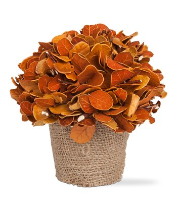 Autumn Potted Leaves Bouquet
