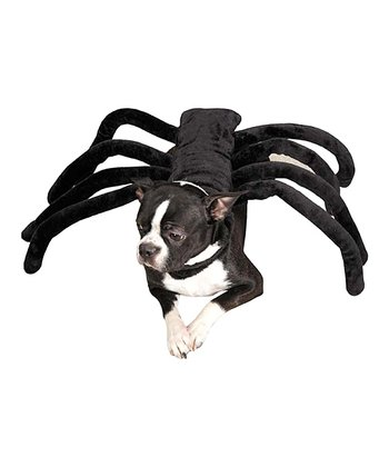Black Spider Pet Costume