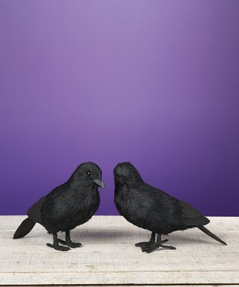 Small Black Night Crow Figurine Set
