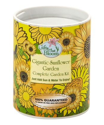 Gigantic Sunflower Garden Kit