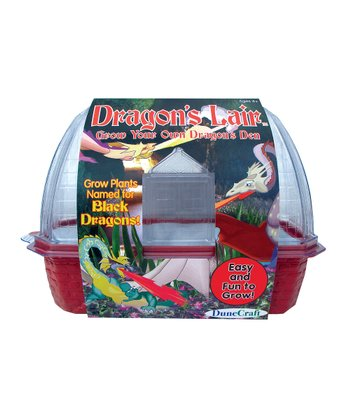 Dragon's Lair Kit