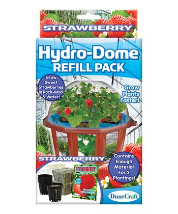 Strawberry Hydro-Dome Refill Set