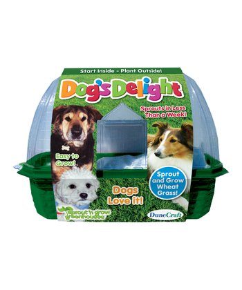 Dog's Delight Kit - Set of Three
