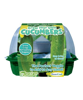 Grow Your Own Cucumbers Kit - Set of Three