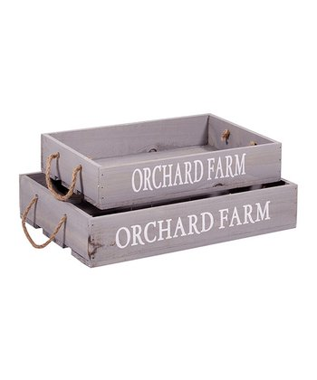Gray 'Orchard' Tray Set