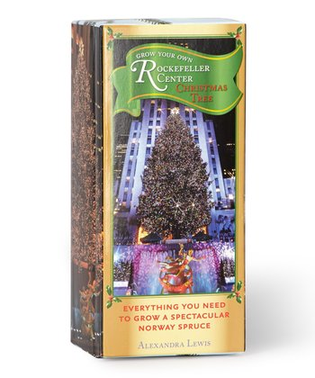 Grow Your Own Rockefeller Center Christmas Tree Kit