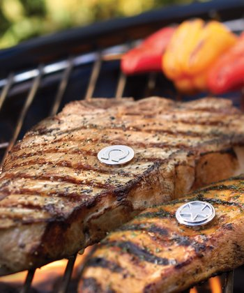 Stainless Steel Lone Star Grill Charm Set
