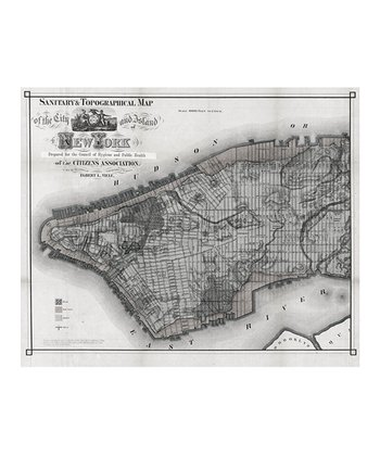 Grayscale 1865 Sanitary & Topographic New York Map Adhesive Print