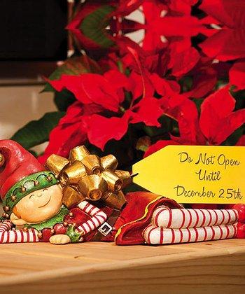 'Do Not Open' Christmas Elf Figurine