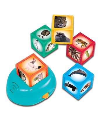 Smithsonian Kids Animal Cube Set