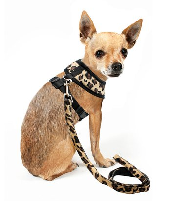 Leopard Dog Leash And Harness Set