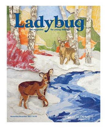 Ladybug Magazine Subscription