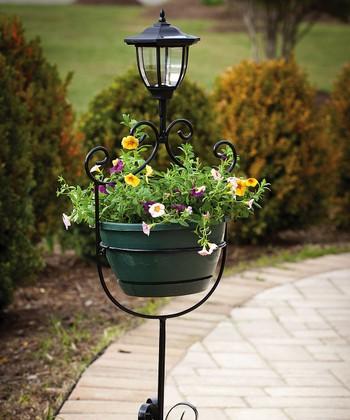 Night Garden: Outdoor Lighting