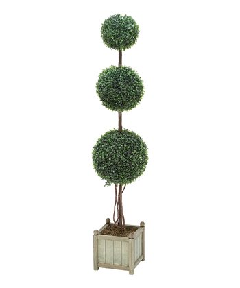 Three-Orb Boxwood Topiary