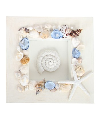 Swirl Seashell Shadowbox