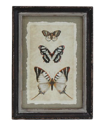 Butterfly Acantha Wall Art