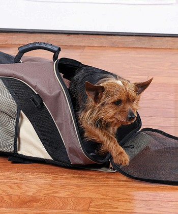Brown Backpack Pet Carrier