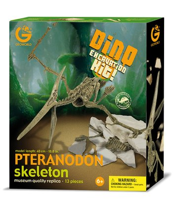 Pteranodon Excavation Kit