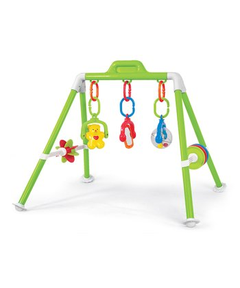 Activity Play Gym Set