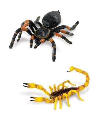 Scorpion & Orange-Kneed Tarantula