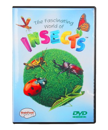 Fascinating World of Insects DVD