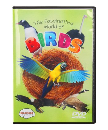 BrainFood Learning Fascinating World of Birds DVD