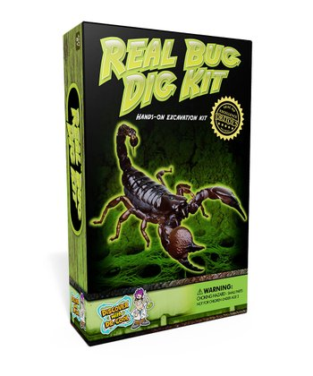 Real Bug Excavation Kit