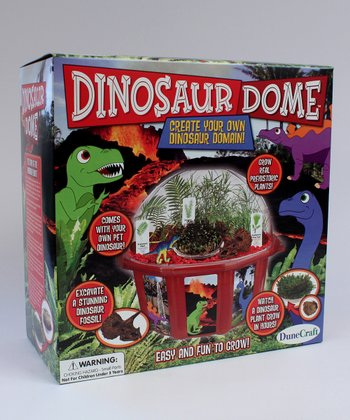 Dinosaur Dome Plant Kit