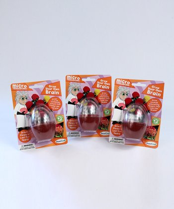 Grow Your Own Brain Kit - Set of Three