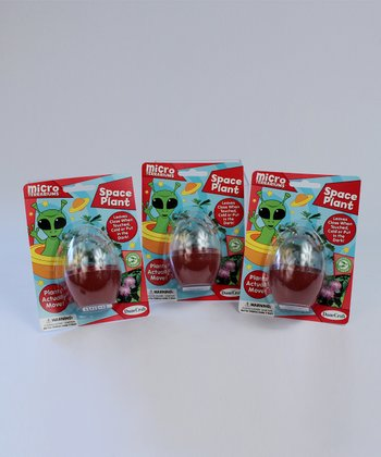 Space Plant Kit - Set of Three