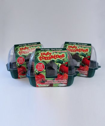 Tasty Tomato Kit - Set of Three