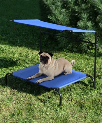 Blue Pet Canopy Cot
