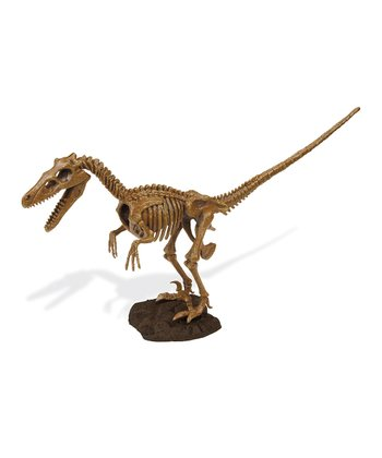 Velociraptor Excavation Kit